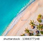 Aerial View Of Umbrellas  Palm...