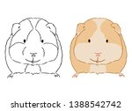Illustration of little cute guinea pig on white background. Hand drawn vector art of small cavy good for coloring for children. Domestic animal drawing. Hand drawn animal sketch.