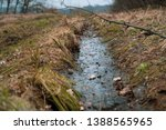 Ditch With A Water In The Wild...