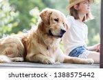 girl sitting with golden... | Shutterstock . vector #1388575442
