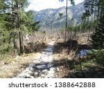 stony path in the polish... | Shutterstock . vector #1388642888