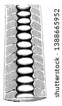 straight chambered shells were... | Shutterstock .eps vector #1388665952