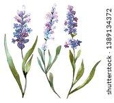 Blue Violet Lavender Floral...