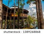Amazon river, Manaus, Amazonas, Brazil: Wooden bridge and houses. Lodge for tourists on the island on the Amazon river.