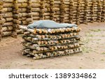 reconstruction of ancient... | Shutterstock . vector #1389334862
