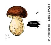 porcini mushroom hand drawn...   Shutterstock .eps vector #1389359255