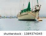 sailing boats in harbor ... | Shutterstock . vector #1389374345
