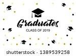 graduation cap vector banner in ...   Shutterstock .eps vector #1389539258
