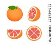 collection of grapefruit  fruit ...   Shutterstock .eps vector #1389544172