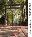 the footpath for the gate to... | Shutterstock . vector #1389595688