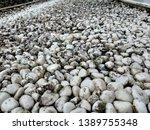 beautiful rocky background ... | Shutterstock . vector #1389755348