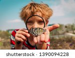 boy looking at butterfy  kids... | Shutterstock . vector #1390094228