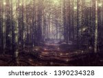 Mystical Forest Landscape With...