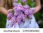 Spring Bouquet Of Lilacs  In...