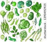 set illustration with green...   Shutterstock .eps vector #1390492925