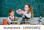 school equipment for laboratory.... | Shutterstock . vector #1390523852