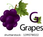 illustrator g font with grapes   Shutterstock .eps vector #139078022
