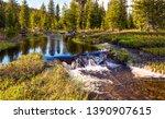 Forest river stream landscape...