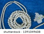 beautiful pearl necklaces and... | Shutterstock . vector #1391049608