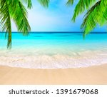 Coconut Palm Trees Against Blue ...