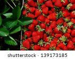 strawberry | Shutterstock . vector #139173185
