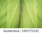 fragments from a textile... | Shutterstock . vector #1391771192
