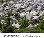 stony landscape in the... | Shutterstock . vector #1391896172