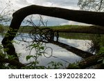 fallen tree and its reflection... | Shutterstock . vector #1392028202