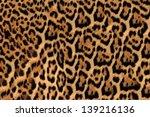 Jaguar  Leopard And Ocelot Ski...