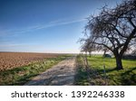 a long and stony path to the... | Shutterstock . vector #1392246338