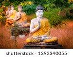 Amazing View Of Lot Buddhas...