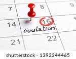Small photo of red highlighter with ovulation day mark on calendar, Concept of fertility chart, trying to have baby and natural contraception, Reminder Ovulation in graph with pen, Planning of pregnancy