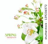 apple blossom isolated on white | Shutterstock . vector #139236572