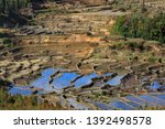 honghe yuanyang  samaba rice... | Shutterstock . vector #1392498578