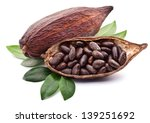 cocoa pod with cocoa beans on a ... | Shutterstock . vector #139251692