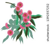 australian gum tree flowers... | Shutterstock .eps vector #1392557252