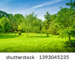 backyard and garden with manu... | Shutterstock . vector #1393045235