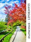 autumn park alley scene view.... | Shutterstock . vector #1393834955