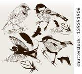 vector set of detailed hand... | Shutterstock .eps vector #139391906