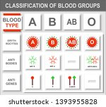 blood group  blood type  red... | Shutterstock .eps vector #1393955828