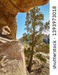 rock formations in the joshua... | Shutterstock . vector #1393973018