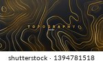 topography relief. abstract... | Shutterstock .eps vector #1394781518