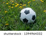 soccer ball on the grass in the ... | Shutterstock . vector #1394964332