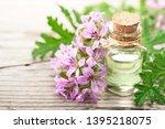 Geranium Essential Oil With...