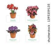 flowers vector illustration.... | Shutterstock .eps vector #1395359135