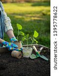 woman gardening. low section... | Shutterstock . vector #1395778622