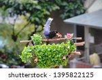 taiwan blue magpie  urocissa...   Shutterstock . vector #1395822125