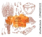 collection of wheat  plant ... | Shutterstock .eps vector #1396020122