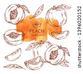 collection of peach and peach... | Shutterstock .eps vector #1396020152