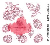 collection of raspberry and...   Shutterstock .eps vector #1396020188